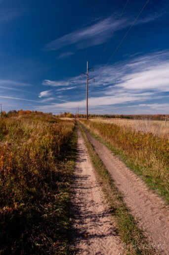 Lake Superior & Ishpeming Railroad