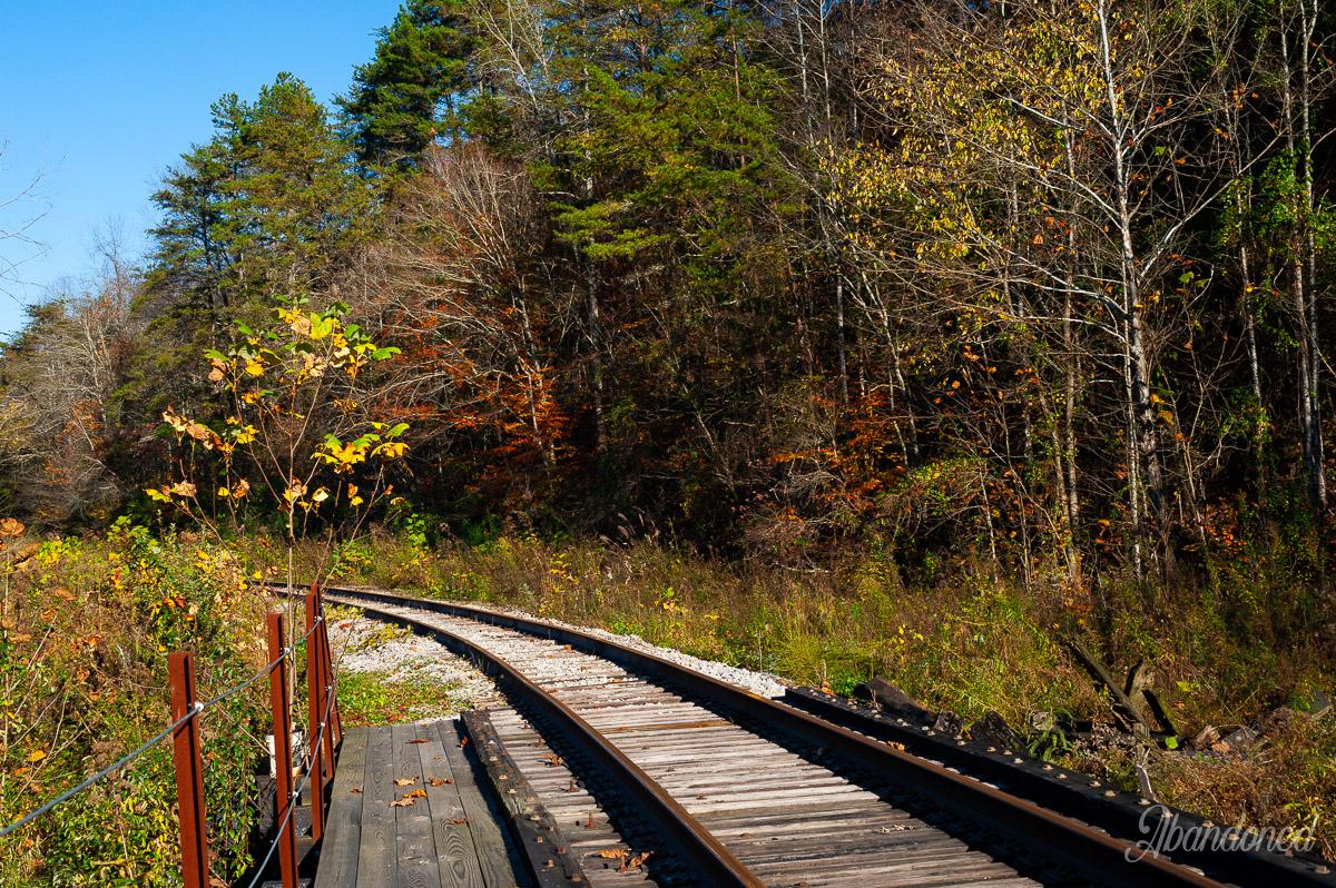 Chesapeake & Ohio Railroad Dawkins Subdivision Goodloe