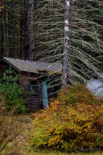 Abandoned Rustic Cottages