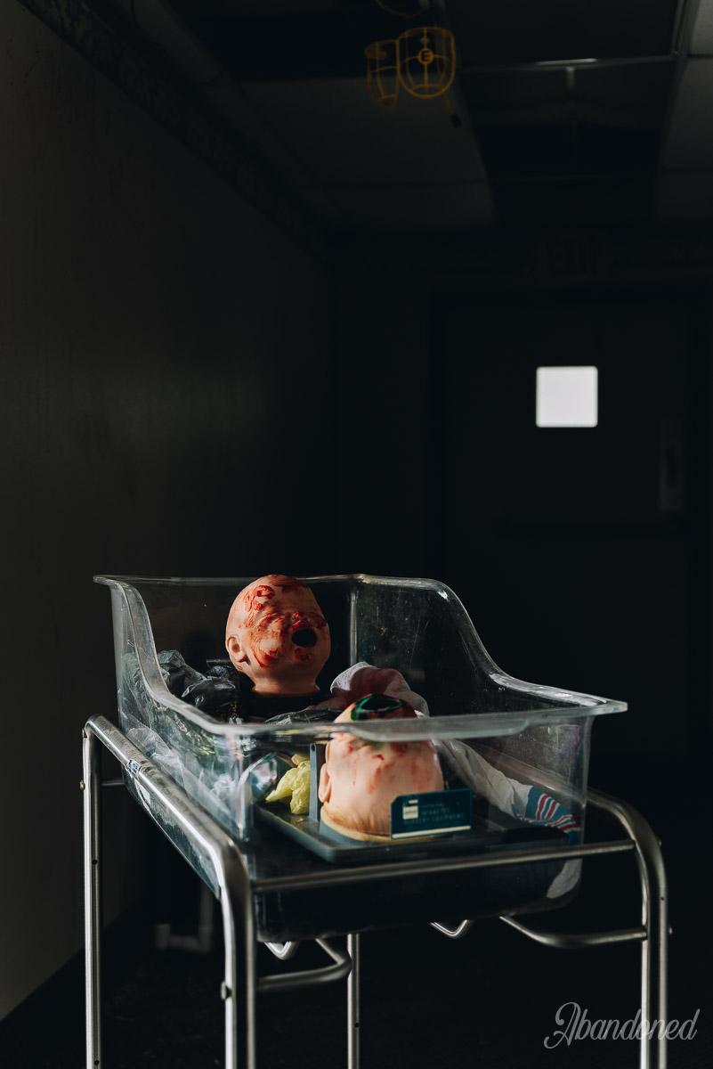 Williamson Memorial Hospital Baby Simulating Doll