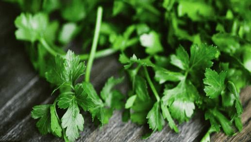 Manfaat Istimewa Sayur Seledri bagi Kesehatan