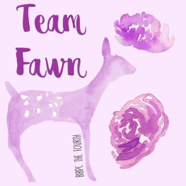 Team Fawn.jpg