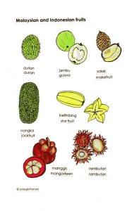 malay fruits