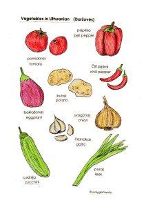 lithu veg 1