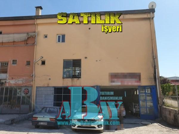 Sasmaz (2a)