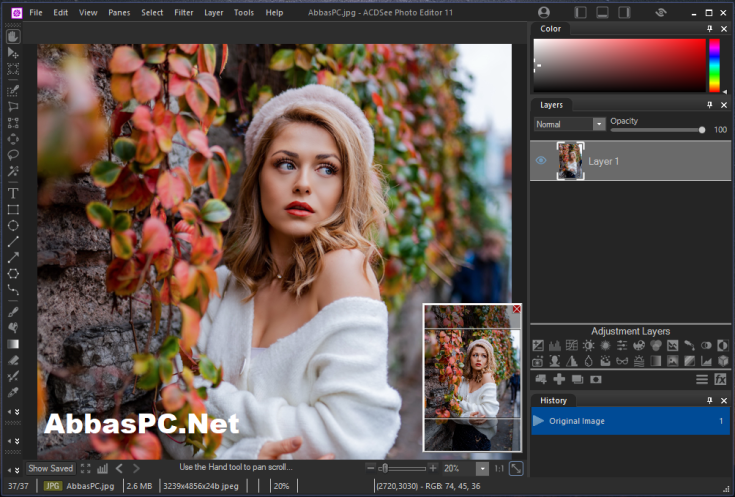 ACDSee Photo Editor License Key Download