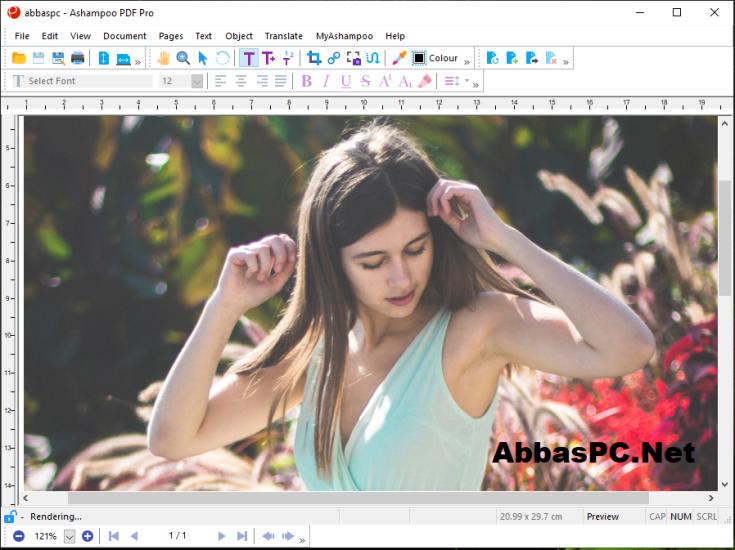 Ashampoo PDF Pro License Key Free Download