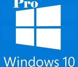 Windows 10 Pro with Office 2019 logo