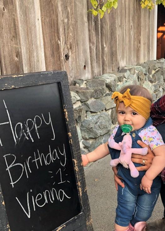 vienna first birthday sign