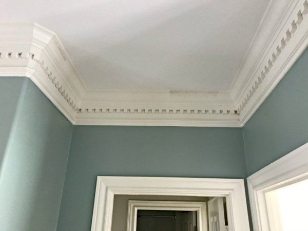 How a light colored paint scheme has transformed this home and even made the crown molding and millwork pop! #AbbottsAtHome #LightWalls #WhiteWalls #GreyWalls #PaintIdeas