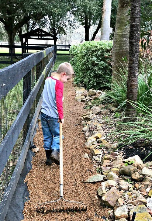 Guys, it's pretty easy to get a weed free gravel path. In 3 easy DIY steps, you can block those weeds for years with just a little labor and 2 things from your local landscape supplier. #AbbottsAtHome #Weeds #NoWeeds #PeaGravel #Landscaping