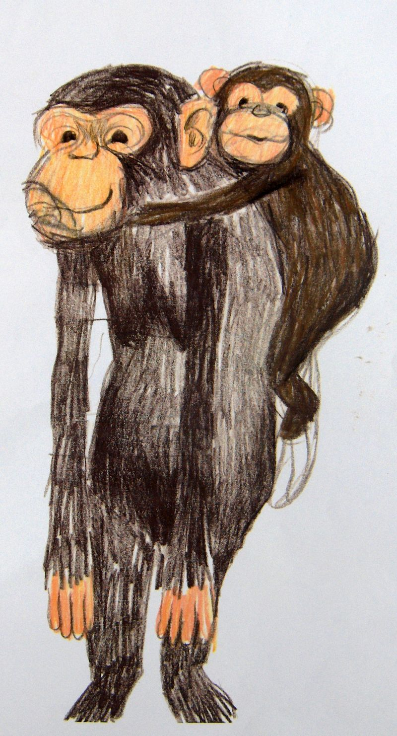 Monkeys by annie