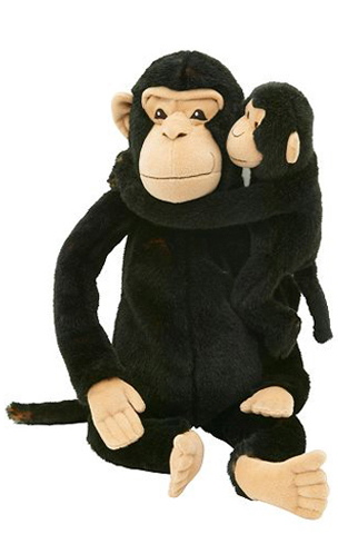 Monkey and puzzle