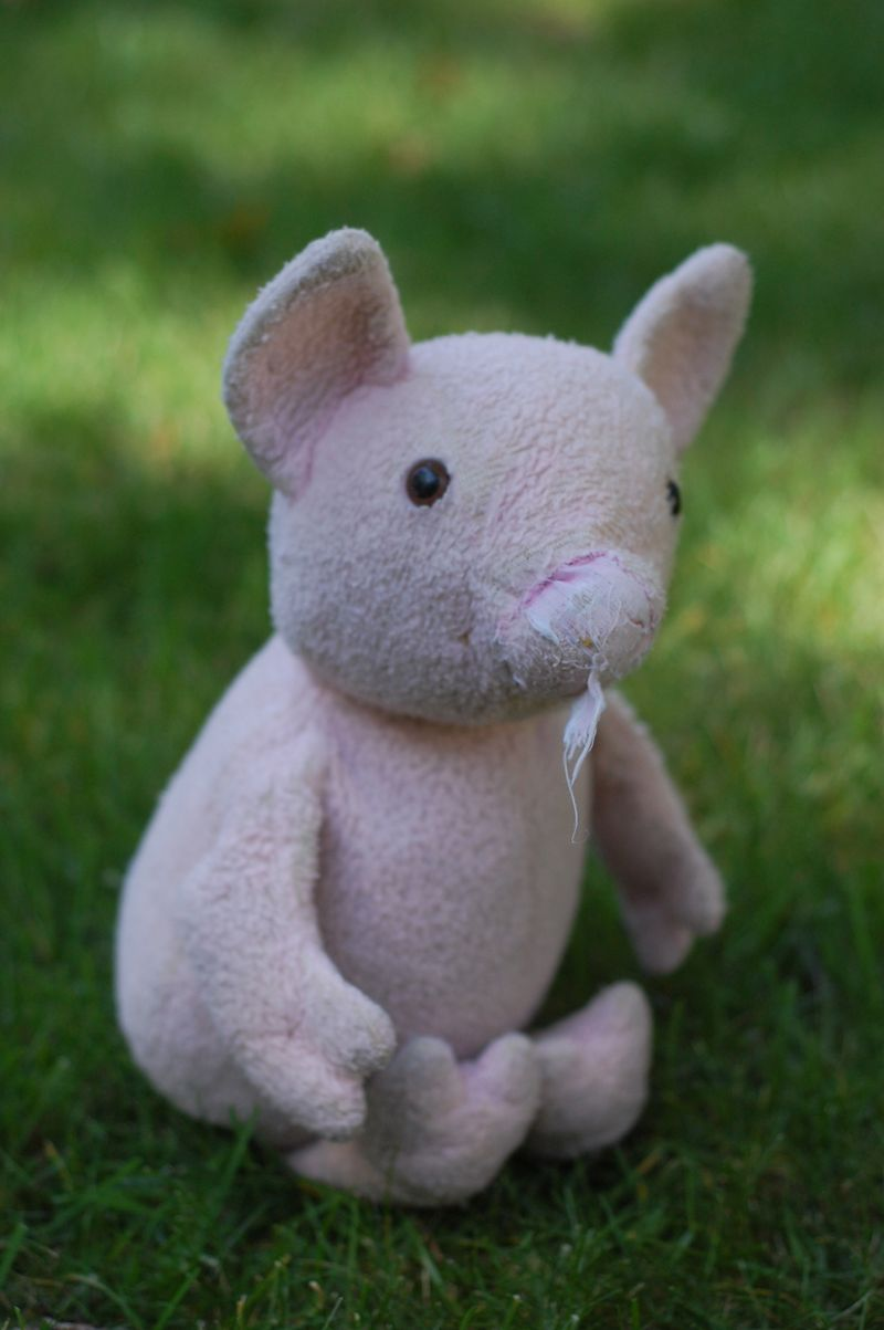 Old pig toy
