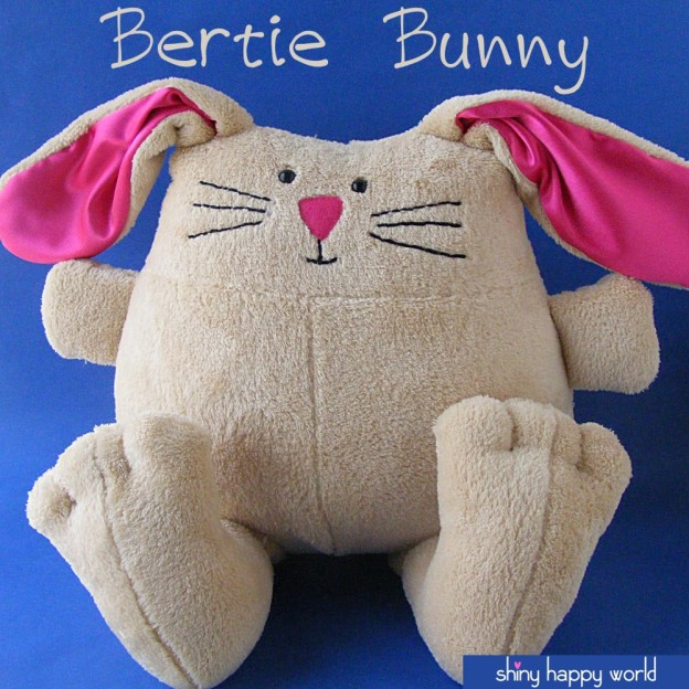 Bertie-bunny-cover-with-logo-1000-px-624x624