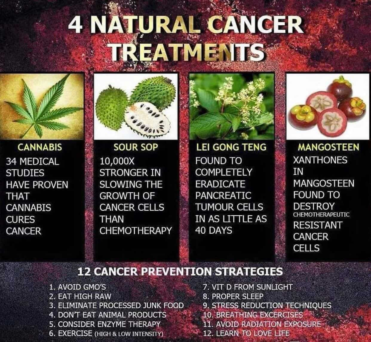 Natural cancer cure