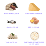 protein content of food