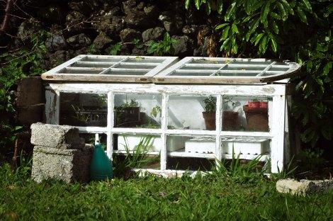 Spring Vegetable Garden Web-6
