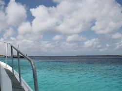 Bootstauchen Bonaire