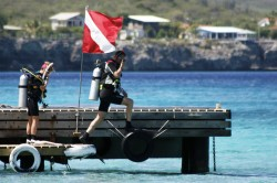 Tauchrevier Bonaire