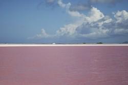 Salinas im Süden von Bonaire