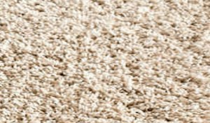 Frieze Carpet