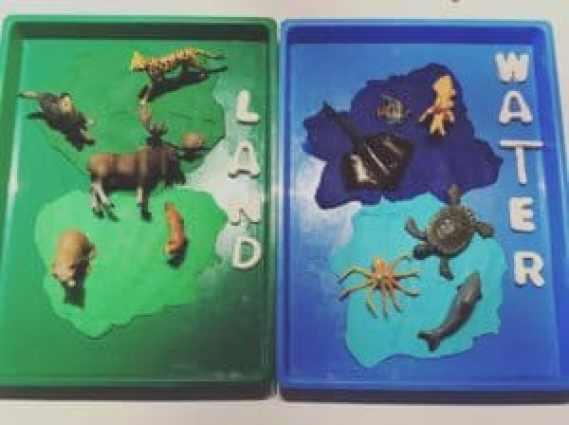 animal habitats tray play