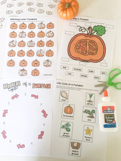 pumpkin learning packet