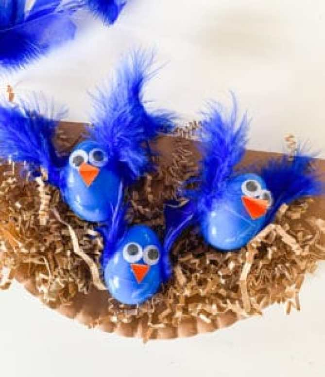 birds nest craft