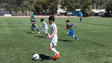 Photo of Urge revisar el estatus de entrenadores deportivos de menores