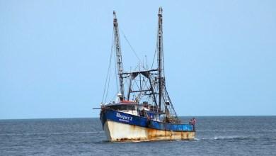 Photo of Necesario frenar la depredación generada por atuneros y camaroneros