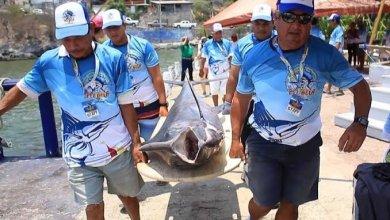 Photo of Esperan que se pueda desarrollar Torneo Internacional de Pesca en este año