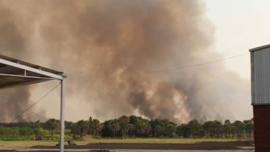 Photo of Irrespirable el aire en municipios de la Costa Grande por incendios forestales