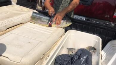 Photo of Gobierno municipal y sociedad cooperativa pesquera suman esfuerzos en beneficio de familias de Zihuatanejo