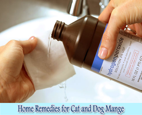 Hydrogen Peroxide : Home Remedies for Cat and Dog Mange