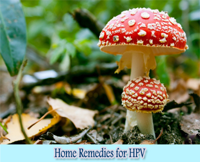 Mushroom : Home Remedies for HPV