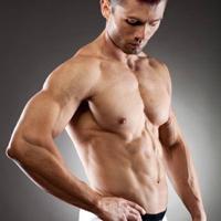 Arm body