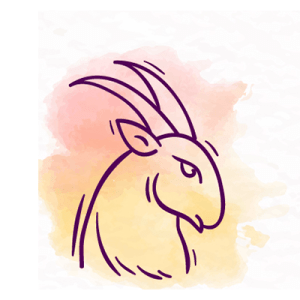 Capricórnio - signos mais ciumentos do zodíaco