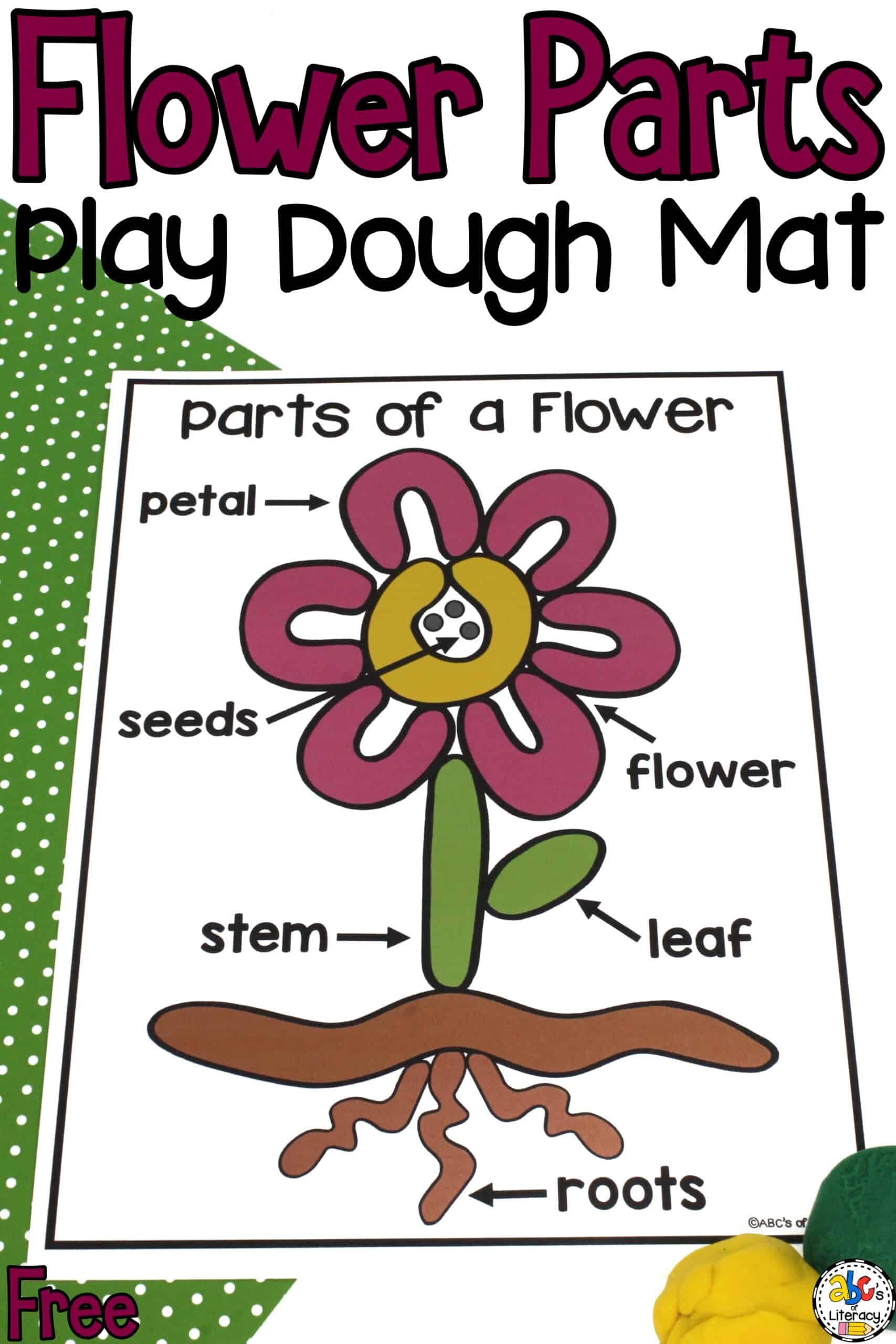 Play Dough Mat