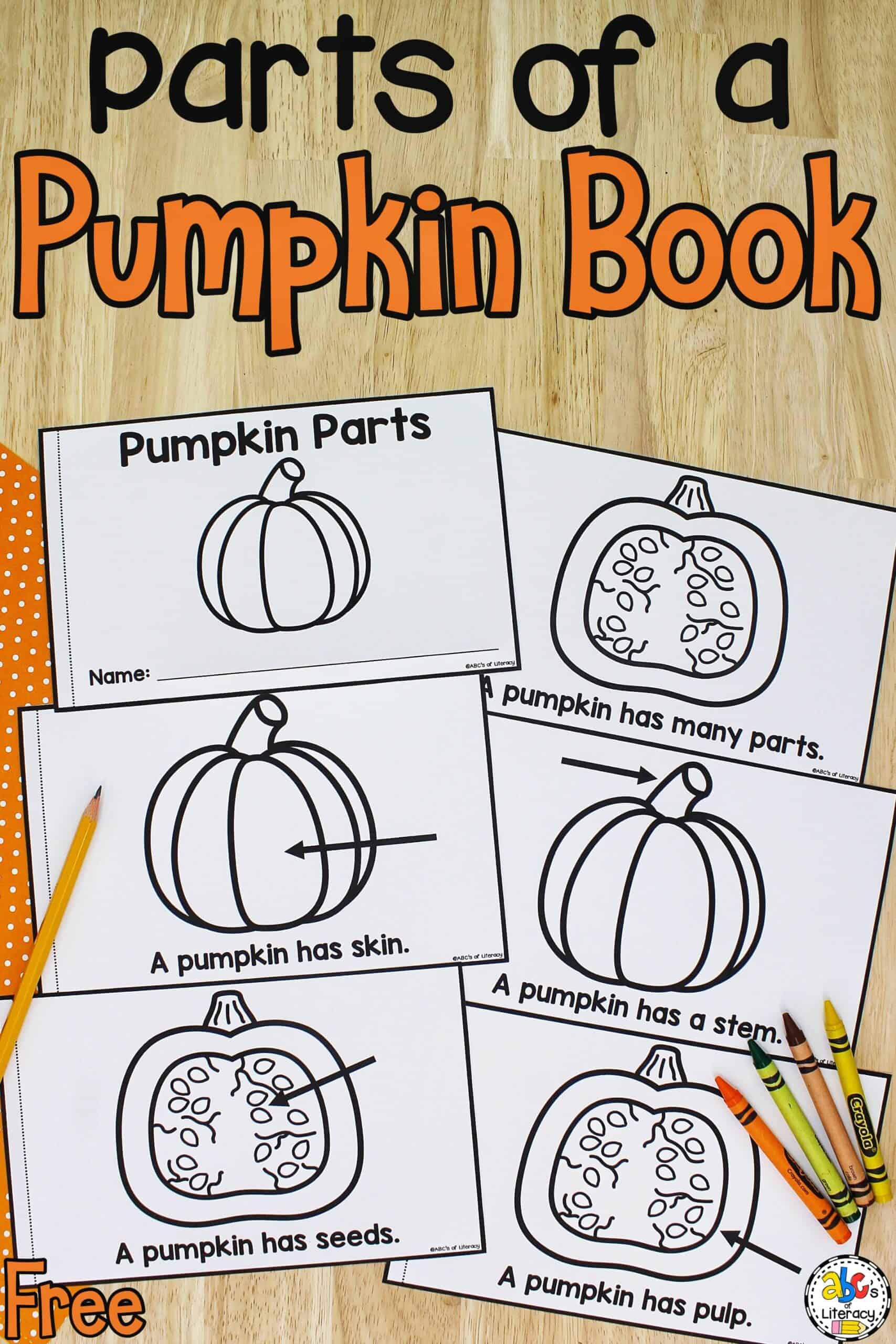 Parts of a Pumpkin Book