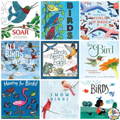 Bird Book List for Kids
