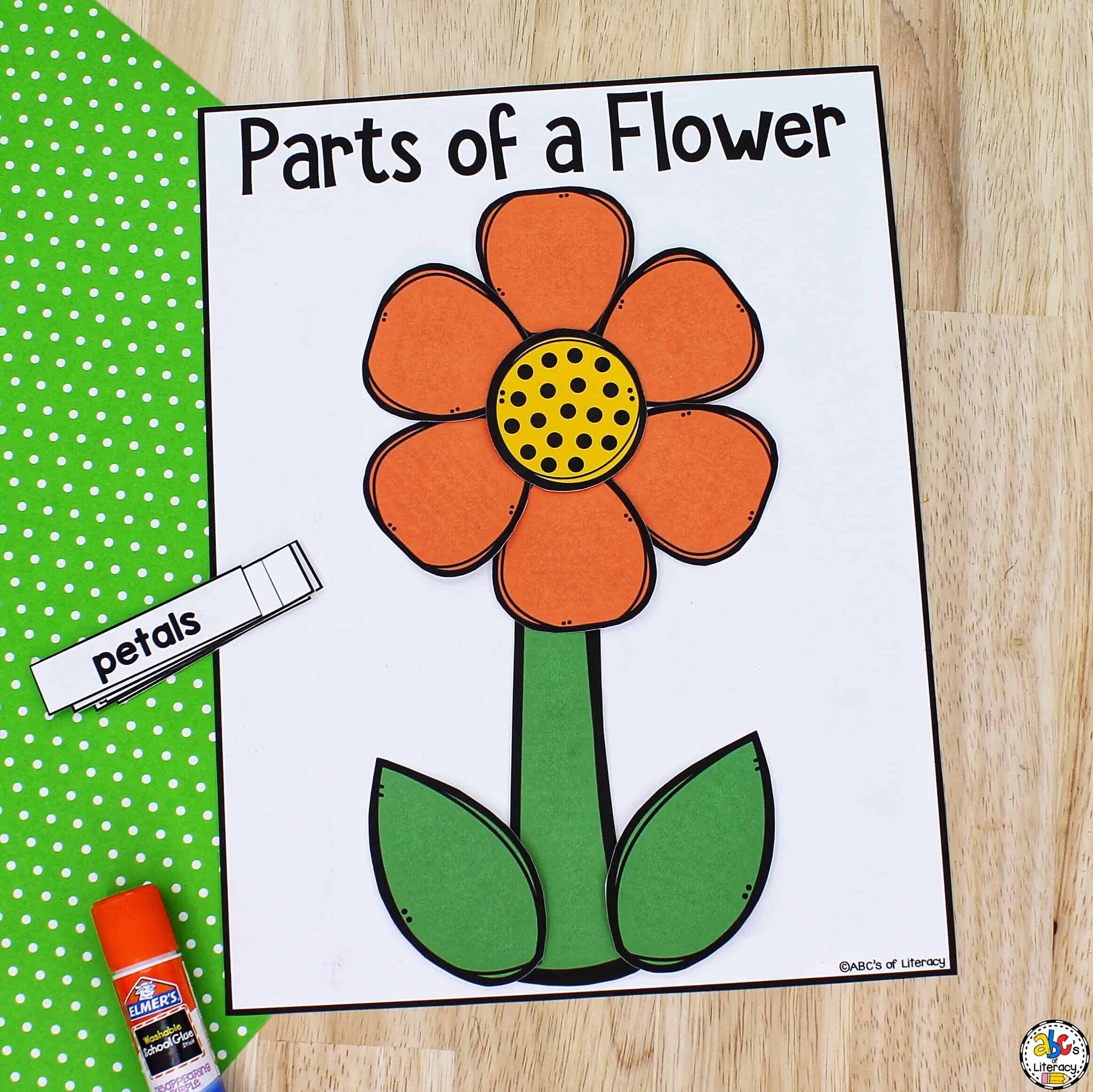 Flower Parts Craft for Kids