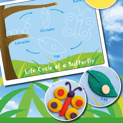 Butterfly Life Cycle Play Dough Mat