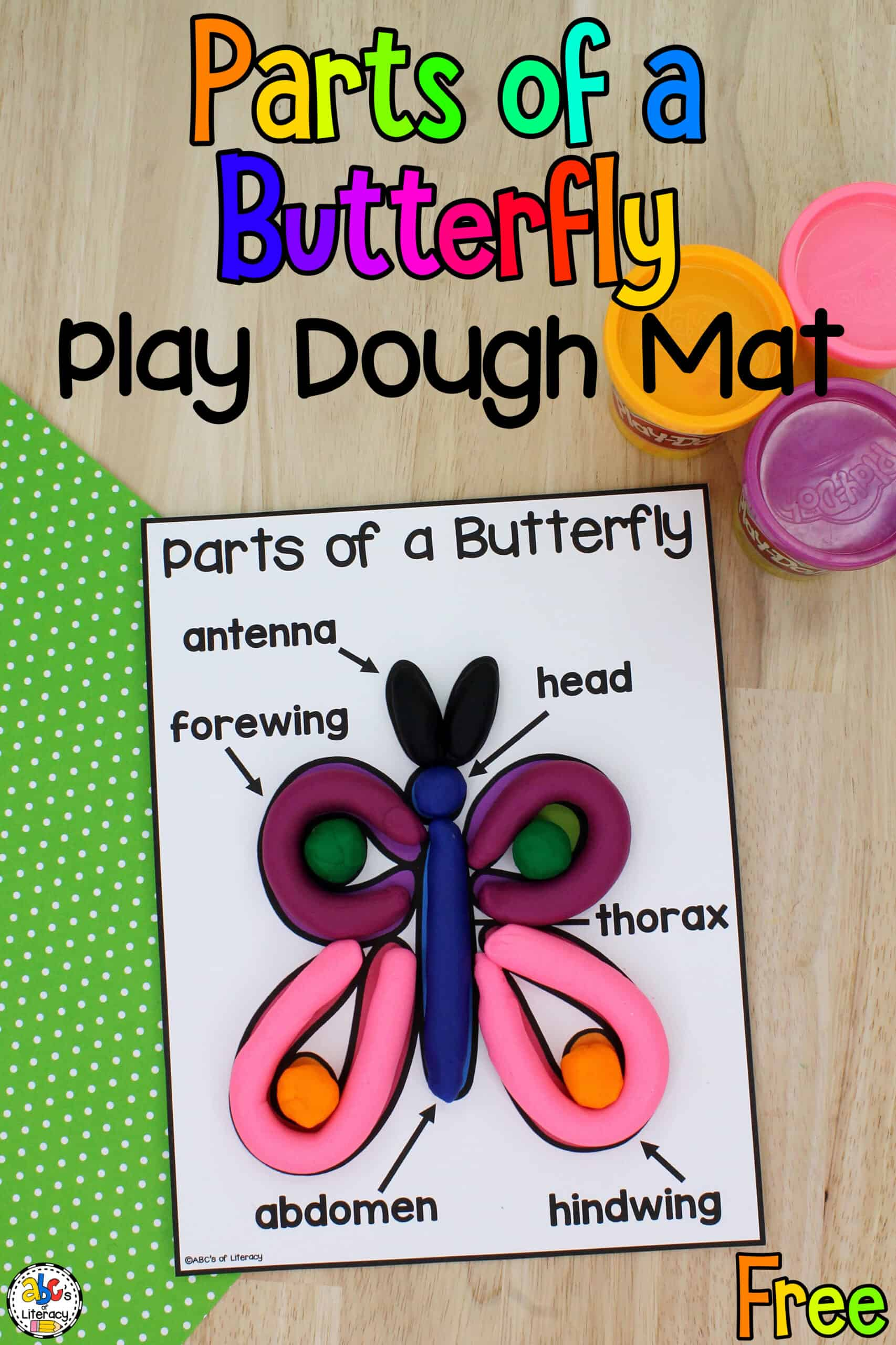 Parts of a Butterfly Activities for Kids
