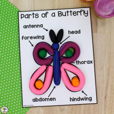 Parts of a Butterfly Play Dough Mat