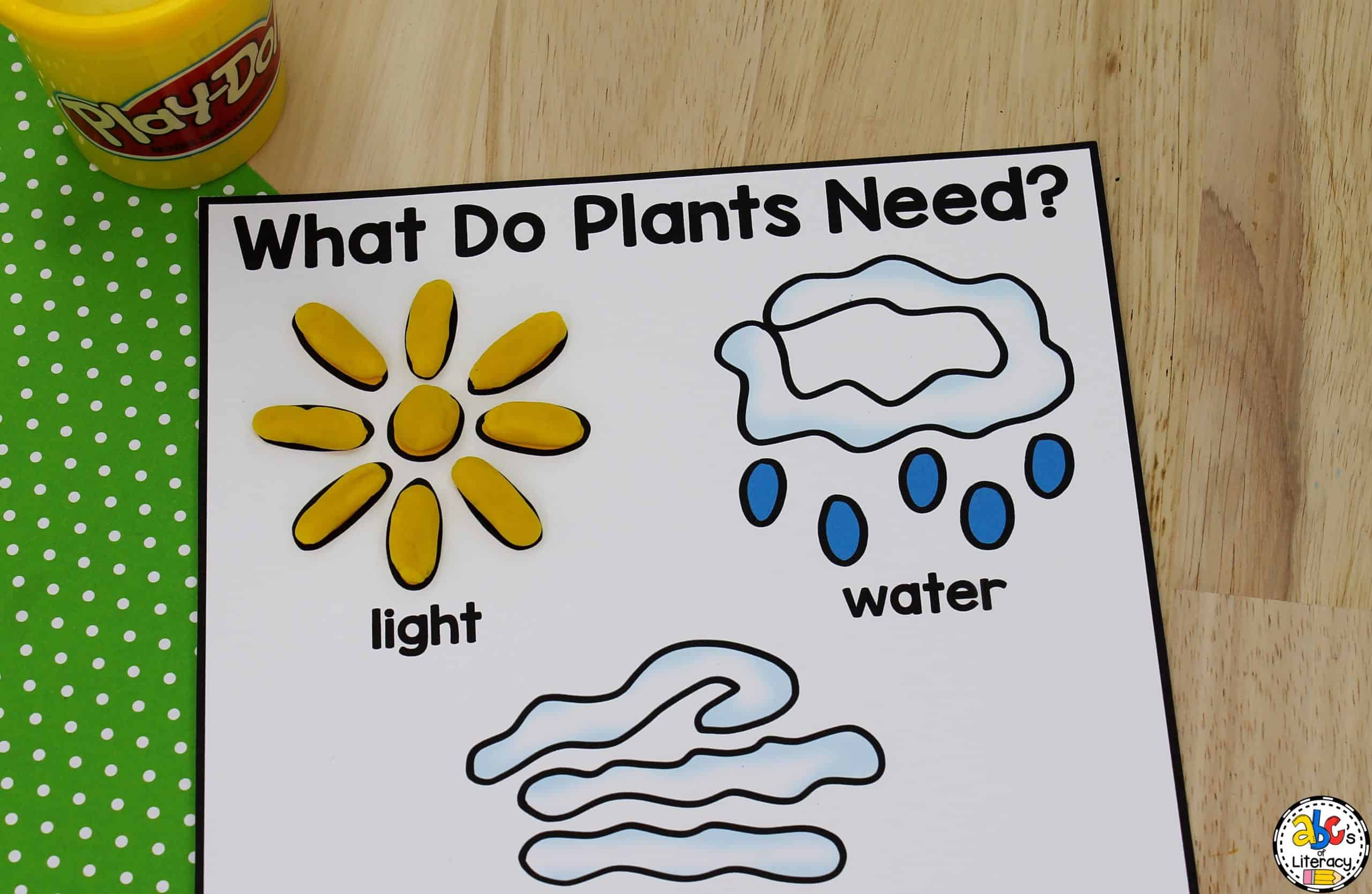 What Do Plants Need To Live Activity