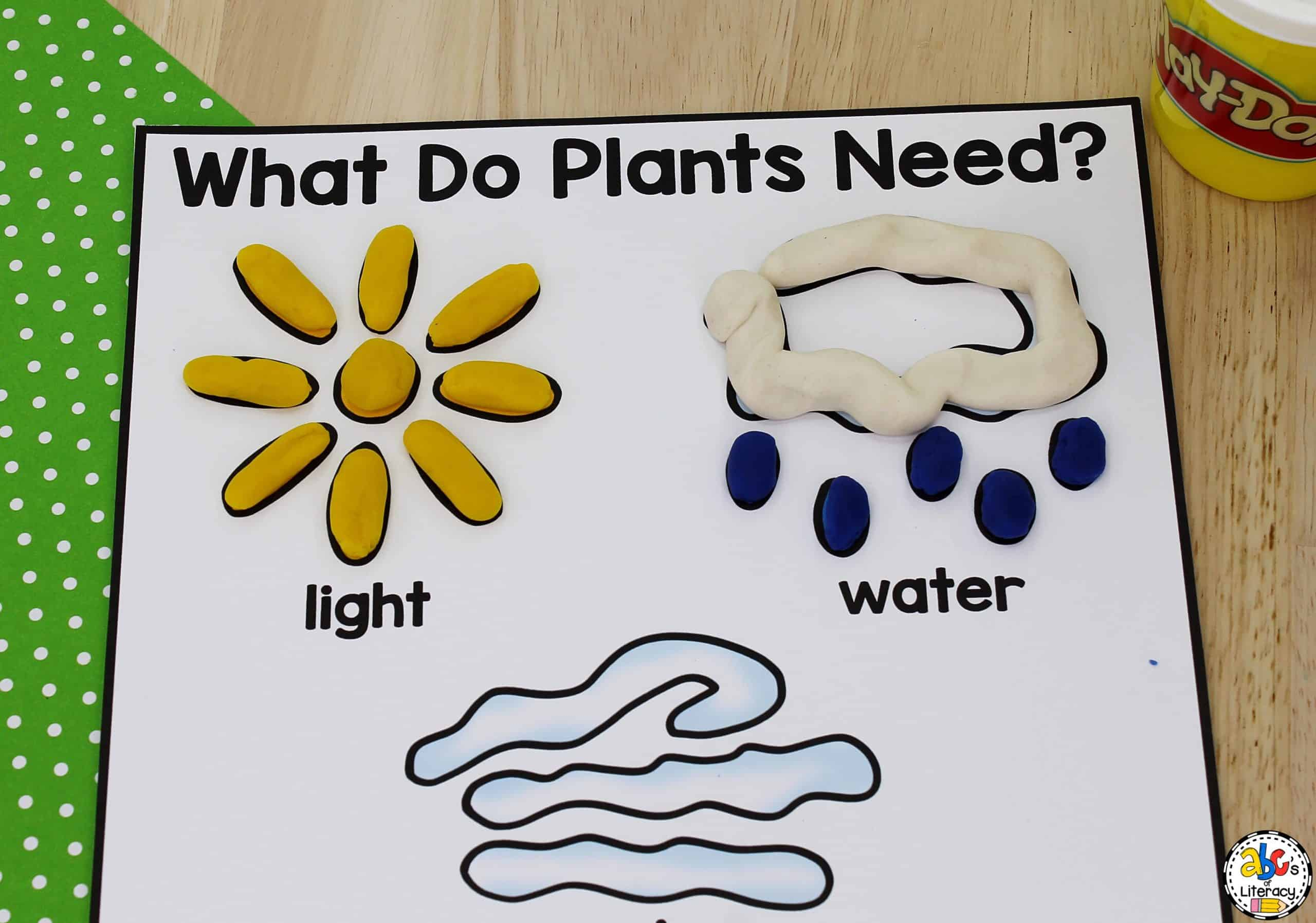 What Do Plants Need To Grow Activity