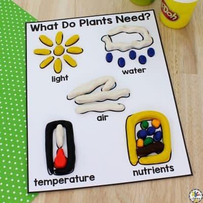 Plant Needs Play Dough Mat