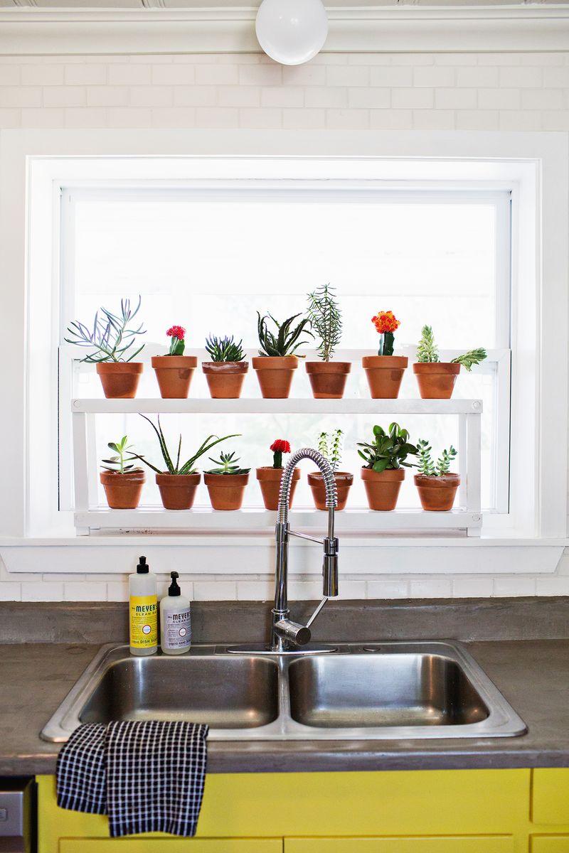 Window Plant Shelf