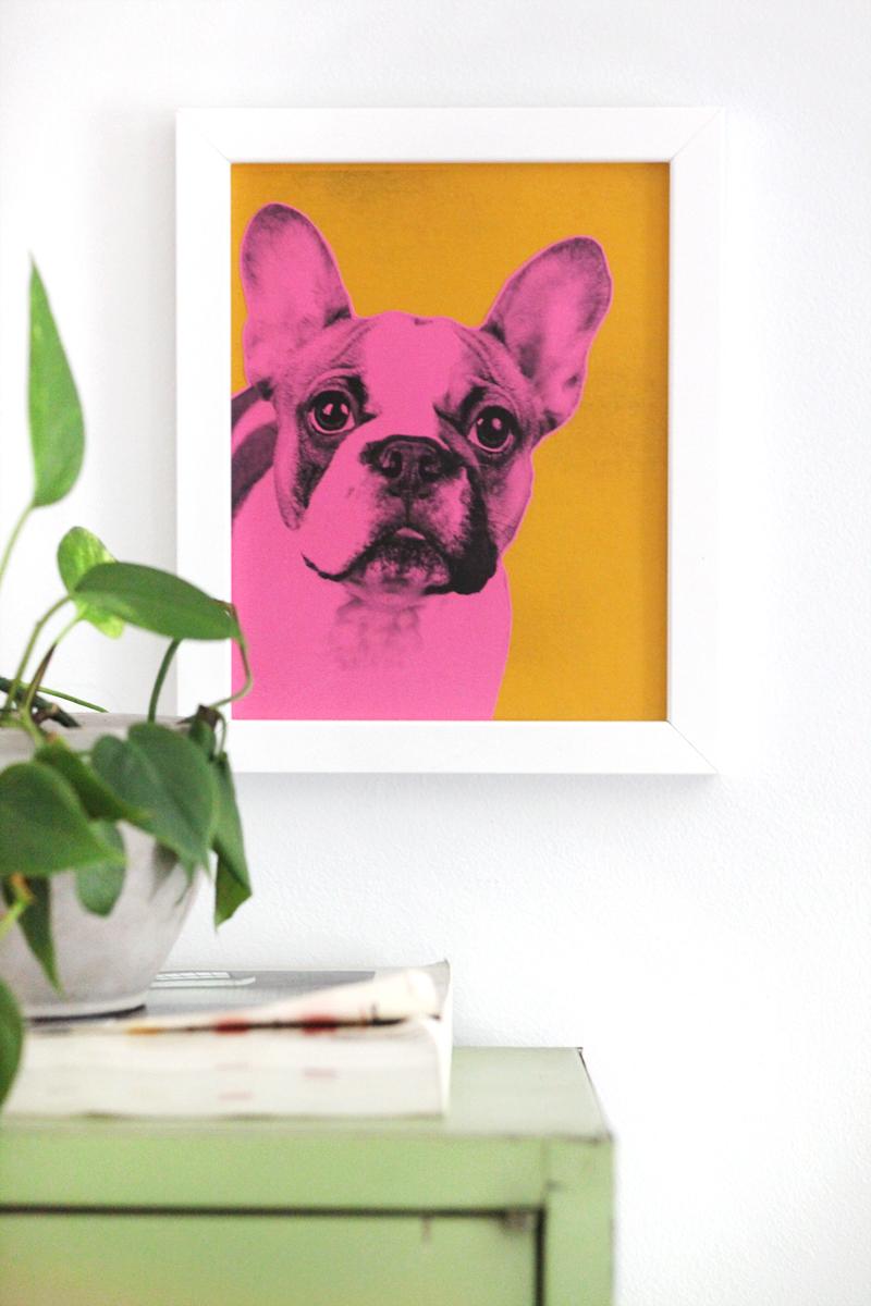 Make Your Own Pop Art Pet Portrait A Beautiful Mess